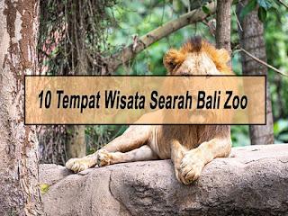 Inilah 10 Tempat Wisata Searah Bali Zoo Dari Bandara Ngurah Rai