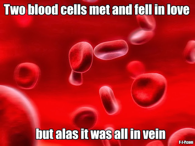 Funny biology pun joke - two red blood cells met and fell in love but alas it was all in vein
