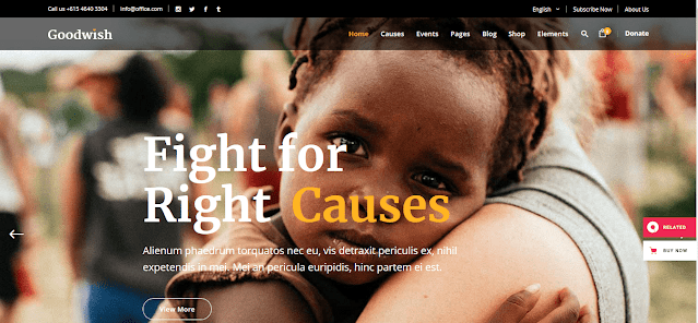 Nonprofit Fundraising & Charity WordPress Themes With Donation System    Goodwish
