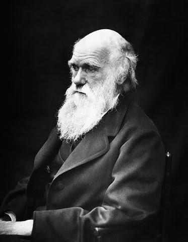 डार्विनवाद (darwinism) क्या है?/ वैज्ञानिकों द्वारा डार्विन वाद कि आलोचनाएं/Darwinwad kiya hai?