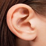 The ear and how to maintain it