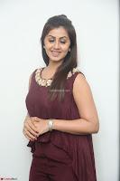 Nikki Galrani in a Brown Shining Sleeveless Gown at Nakshatram music launch ~  Exclusive 042.JPG