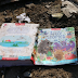 Iran plane was most likely SHOT DOWN as crash pics show 'obvious projectile holes', say expert