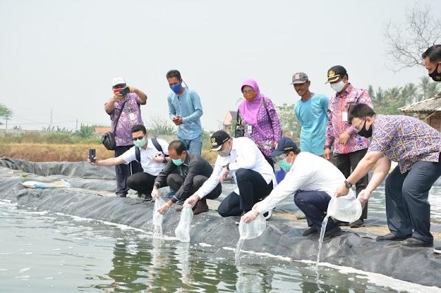 """Bupati Zaki Harapkan """"Aqua Culture"""" Ketapang Mauk, Jadi Destinasi  Wisata"""