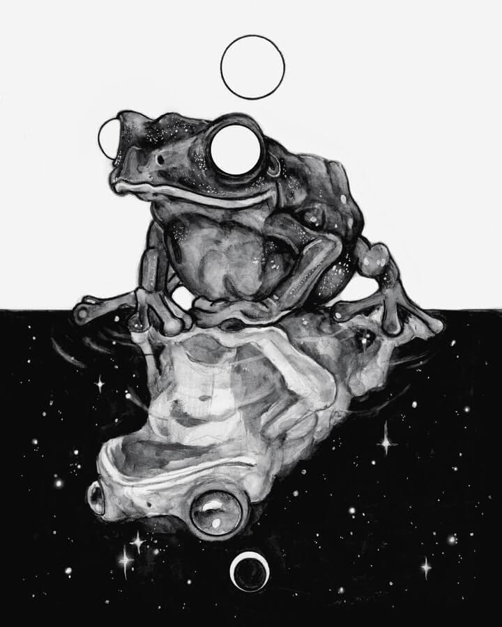 08-Frog-universes-Brian-Serway-www-designstack-co