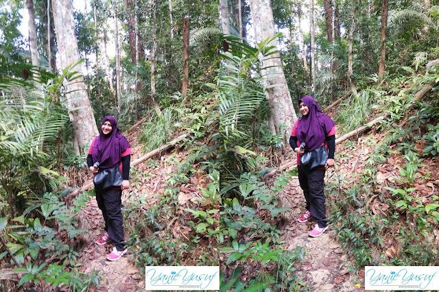 Part 3 , Jungle Trekking , Canopy Walk