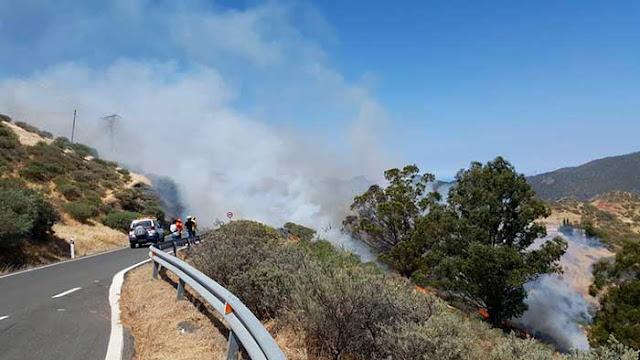 El incendio forestal en la cumbre de Gran Canaria dio comienzo en Artenara, Las Peñas de Juncalillo