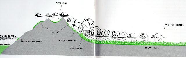 Resultado de imagen para los andes y los vientos alisios