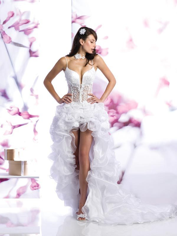 Sexy Short Wedding Dress Designs Picture - Wedding Dress