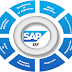 Ensuring Business Growth through SAP ERP