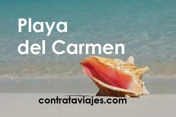Orilla de la Playa en dia soleado con texto de Playa del Carmen