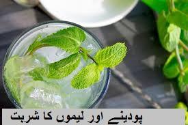 پودینے اور لیموں کا شربت  Mint & Lime Drink Recipe in Urdu
