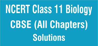 NCERT Class 11 Biology All Chapters Solutions