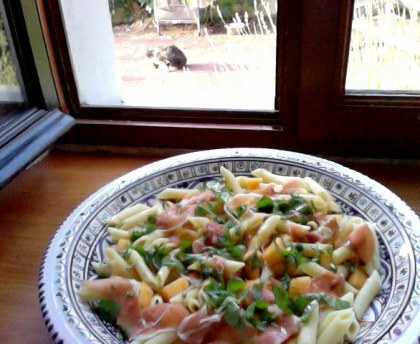 Pasta salad with melon and raw ham