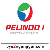 Lowongan Kerja BUMN Terbaru PT Pelindo 1 2019
