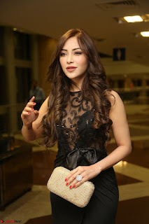 Angela Krislinzki in Transparent Black Gown at Rogue Movie Teaser Launch 1st March 2017 110.JPG