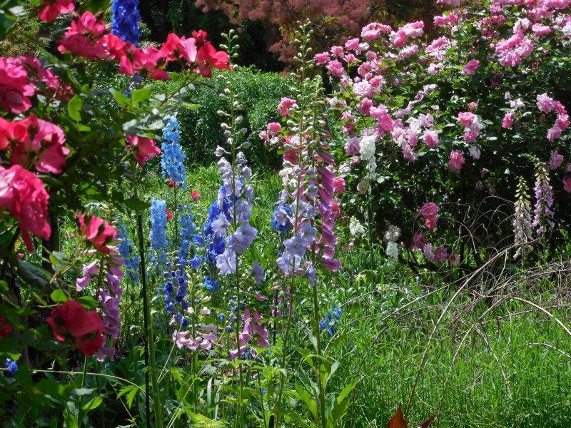Jehuite jard n bot nico de atlanta todav a un poco m s for Plantas de un jardin botanico