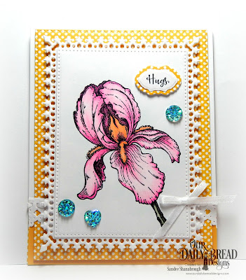 Our Daily Bread Designs Stamp Set: A True Friend, Our Daily Bread Designs Custom Dies: Vintage Borders, Mini Tags and Labels, Pierced Rectangles, Lavish Layers, Our Daily Bread Designs Paper Collection: Birthday Bright