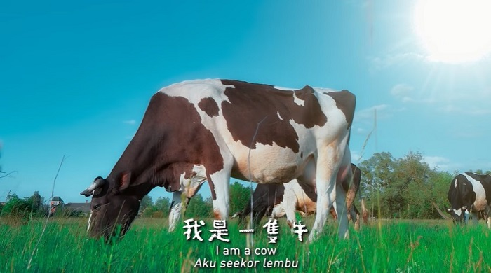 Namewee Chinese New Year Song I Am a Cow