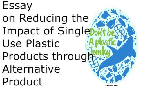 Essay on Reducing the Impact of Single Use Plastic Products through Alternative Product
