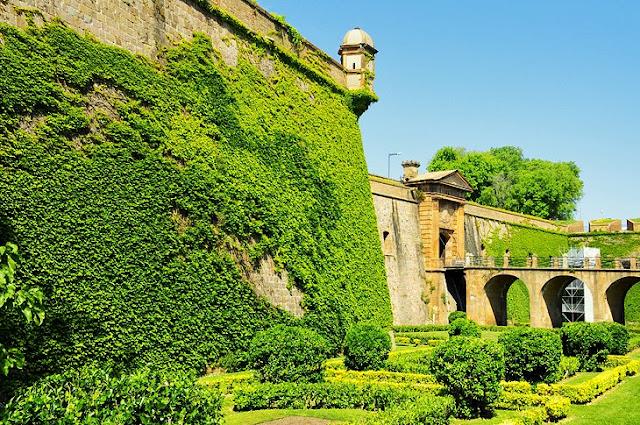 Scenic Views and Art Museums in Montjuïc