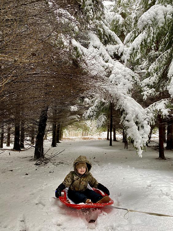 Winter Woods Walk | My Darling Days