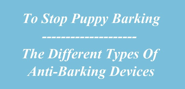 Stop Puppy Barking