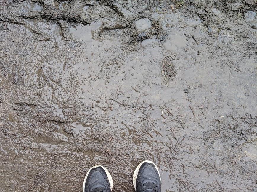 Mud at Kielder Winter Wonderland