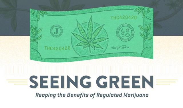 Seeing Green Reaping the Benefits of Regulated Marijuana