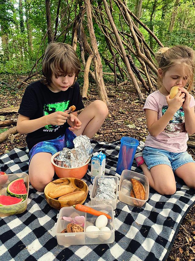 minecraft picknick in het bos