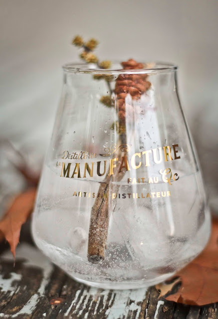 Gin-panacee,gin-quebecois,madame-gin,madame-gin-blog,la-manufacture