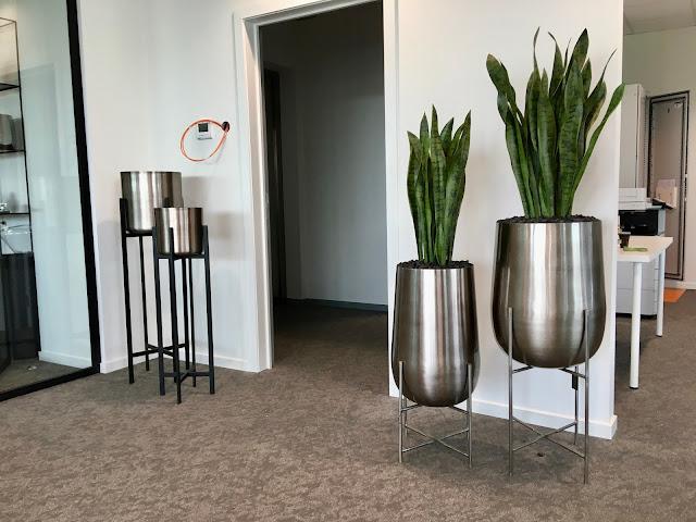 Grote kunstplanten prijzen voor buiten kopen of huren groot goedkoop hangend of tegen muur met bloemen palmboom op terras of tegen wand in de winkel