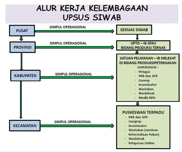 Disnakkan Kabupaten Bogor Percepat Pencapaian Swasembada Daging 241