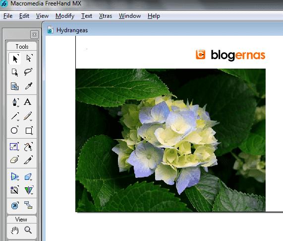 Cara Mengkompres Gambar dengan Macromedia FreeHand MX