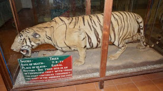 jim corbett museum_DevBhumiUttarakhand