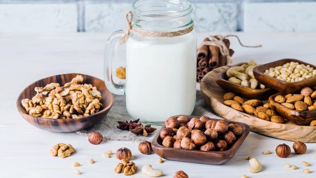 nut milk alternatives to dairy