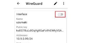 Koneksikan ke server wiregurad