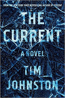 Book Review and GIVEAWAY: The Current, by Tim Johnston {ends 11/25}