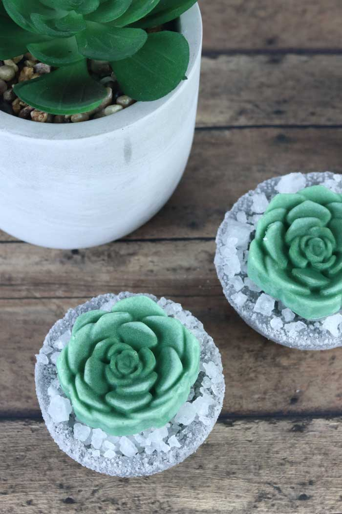 How to make cute DIY succulent bath bombs. These fake succulents would make a unique gift idea. This homemade bath bomb recipe is made with Epsom salt, baking soda, and essential oil and without cornstarch. It is full of fizzy bubbles when it hits the water.  Get ideas for home made bath bombs with a pretty succulent bath melt on top. I used the best bath bomb molds that are sturdy.  It's a plain circle mold, so there's no special one needed. #bathbomb #diy #succulent