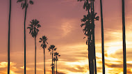 Sunset Photography wallpaper   Nature