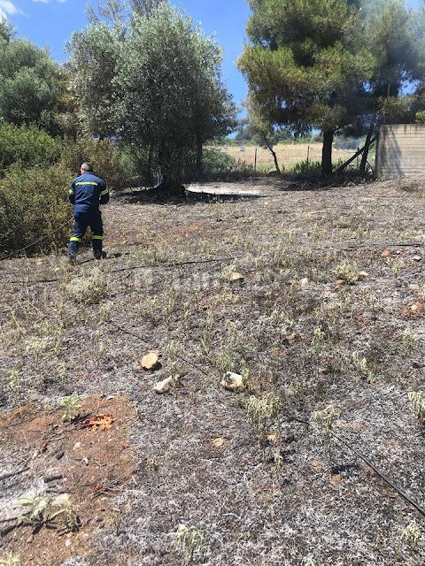 Αυλάκι Στυλίδας: Οι πυροσβέστες πρόλαβαν την φωτιά έξω από το εκκλησάκι
