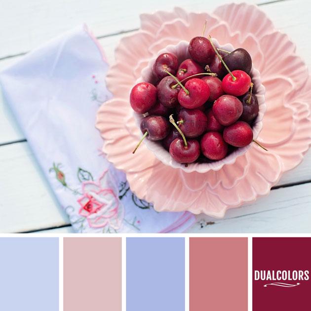color_paleta_71
