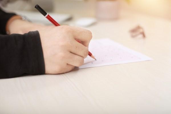 Tahapan Seleksi CPNS Dinas Perhubungan yang Harus Diketahui