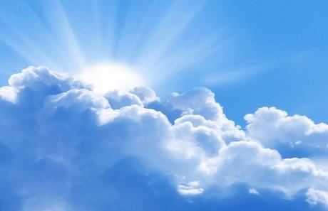 99 Arti Mimpi Angsa Terbang Menurut Primbon, dalam Islam ...