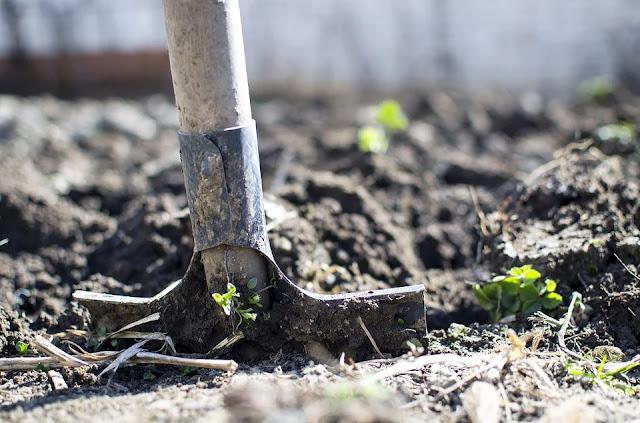 terreno-ph terreno-badile-scavo