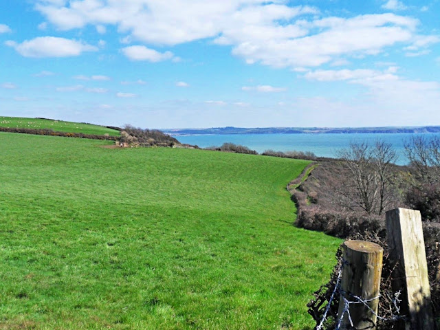 Green fields by the sea in Cornwall