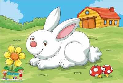 Rompecabezas Conejo
