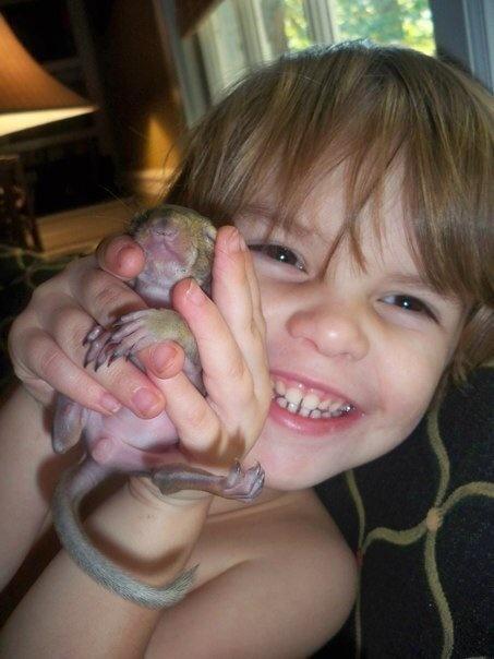 rescue the baby squirrel bella