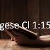 Colossenses 1. 15-20 - Estudo exegético