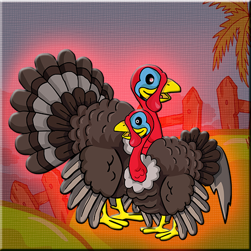 Turkey Family Rescue Walk…